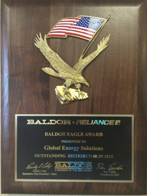 Baldor Eagle Award 2013